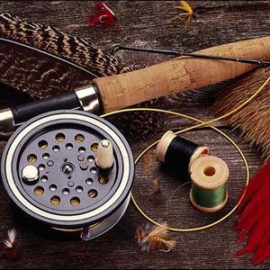 Охотничьи и рыболовные магазины Кольчугино